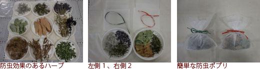 防虫効果のあるハーブ、左側1、右側2、簡単な防虫ポプリ